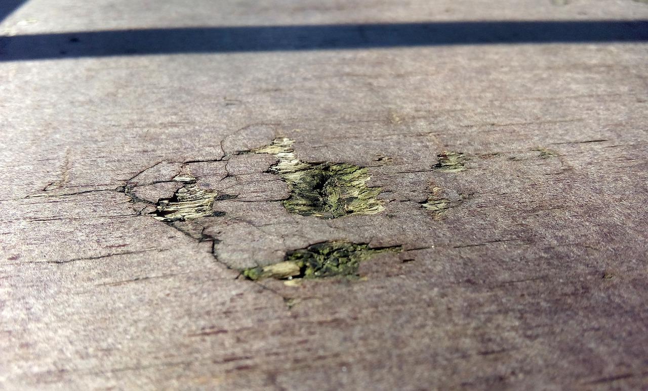 ¿Por qué el bacheo de calle es un buen negocio?